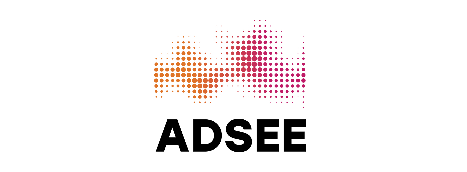 Image for New achievements of the ADSEE project!